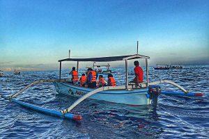 Lovina Boat dolphin